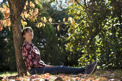 Young brunette sitting under an autumn tree Stock Photography