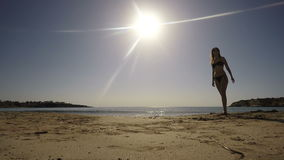 Young brunette in sunglasses walks on the beach near the sea. Shoots against the sun. Young woman relaxes on the beach near the ocean. Woman with long hair walks stock footage