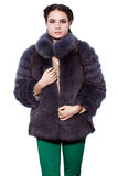 Young brunette woman in aa violet fur coat made of arctic fox Stock Image