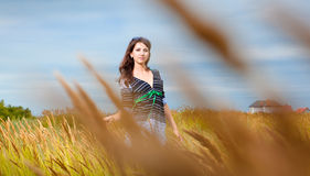 Young brunette woman on autumn field Stock Photos