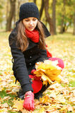 A young brunette woman collecting fallen leaves Stock Image