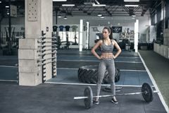 Young woman exercises in gym healthy lifestyle ready to lift barbell Royalty Free Stock Image