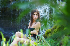 A young brunette woman in a forest background Royalty Free Stock Image