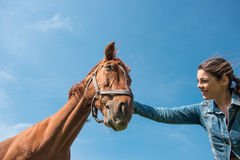 Young brunette woman and her horse stock photo