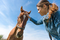 Young brunette woman and her horse stock photos