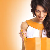 A young brunette woman holding a shopping bag Royalty Free Stock Photos