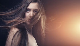 Young brunette woman with long flying hair. Young brunette  woman with long flying hair on gradient background Royalty Free Stock Photos