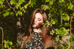 Young brunette woman posing near green tree in sunlight Royalty Free Stock Image