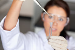 Young brunette woman pouring a liquid in a tube. In a laboratory Royalty Free Stock Photography