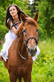 Young brunette woman rides a horse Stock Photos