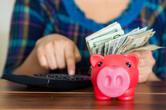 Young brunette woman sitting down facing camera, using calculator and holding stack of dollar bills, pink piggy bank on Stock Photo