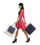 Young brunette woman with some shopping bags Stock Images