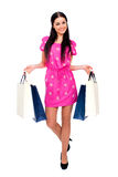 Young brunette woman with some shopping bags Royalty Free Stock Image