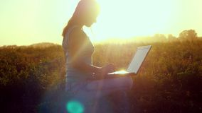 Young brunette woman typing on a laptop outdoors at beautiful sunset sitting on the grass with amazing lense flare. Young woman typing on a laptop outdoors at stock footage