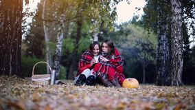 Young brunette women sitting on picnic bundled up in a blanket drinking hot tea in autumn park. Girls on a fallen leaves stock video footage