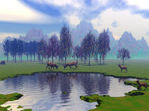Young Buck Gathering. Young Buck Deer gathered at a small lake Stock Photography
