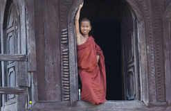 Young Buddhist Monk in Myanmar (Burma) Royalty Free Stock Image