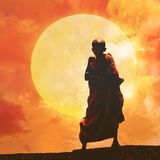 Young Buddhist monk on orange sunset Stock Images