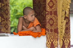 Young Buddhist monk in temple. Young Buddhist monk at temple in Luang Prabang  looking around concentrated, Laos juli 2016 Stock Photos