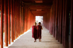 Young Buddhist monk walking and reading royalty free stock image