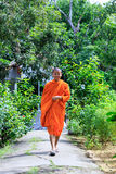 Young Buddhist Monk Walking To The Camera Royalty Free Stock Images