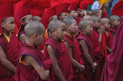 Young buddhist monks at the ceremony. Katmandu, Nepal - 15.06.2012 - group of young buddhist monks in a festive clothes at the celebration of Buddhas Birthday at Royalty Free Stock Photography