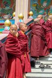 Young Buddhist Monks royalty free stock images