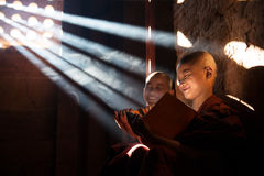 Young Buddhist novice monks reading royalty free stock images