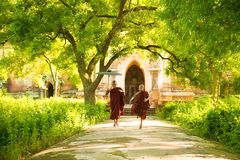 Young Buddhist novice monks running Royalty Free Stock Photography