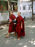 Young buddhist novices walk royalty free stock photography