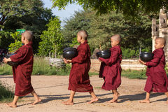 Young buddhist novices walk to collect alms and offerings on the streets of Bagan, Myanmar. Stock Images
