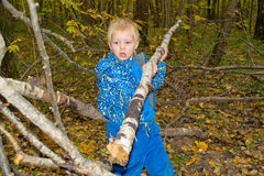 Young builder. Boy builds a hut in the forest royalty free stock image