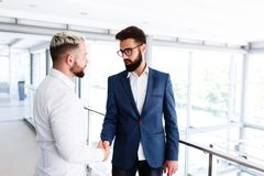 Young Business Colleagues Congrats Eachother. Young Business Colleagues Congrats Each other - hand skahe, shaking hands royalty free stock images