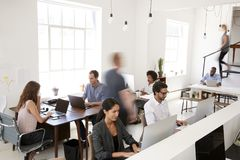 Young Business Colleagues Working In A Busy Open Plan Office Stock Photos