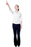 Young business executive pointing upwards Stock Image