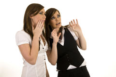 Young business ladies interacting Stock Image