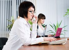 Young business ladies working in office Royalty Free Stock Photos