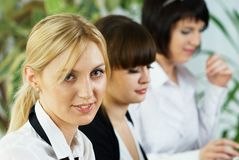 Young business ladies working in office Royalty Free Stock Image