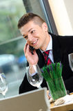 Young business man talking on the phone Royalty Free Stock Photos