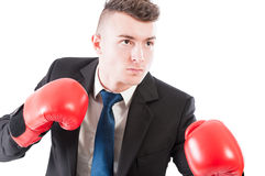Young business man wearing boxing gloves Stock Image