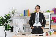Young business man at work royalty free stock images