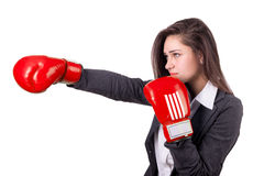 Young business woman with boxing gloves Royalty Free Stock Images
