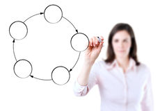 Young business woman drawing circle diagram. Young business woman drawing circle diagram, white background Royalty Free Stock Image