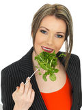 Young Business Woman Eating Mixed Leaves Salad Royalty Free Stock Image
