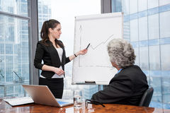 Young business woman making a presentation Stock Photos