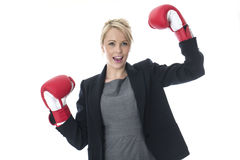 Young Business Woman Wearing Boxing Gloves Royalty Free Stock Photography