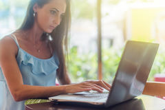 Young business woman working on her laptop, typing, sitting in a restaurant next to window  sunny summer morning. Female Royalty Free Stock Photos