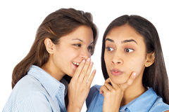 Young business women gossiping. Stock Photo