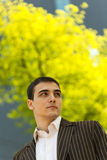 Young Businessman. Looking away, shallow depth-of-field Stock Image
