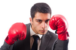 Young businessman with box gloves isolated on Royalty Free Stock Photography